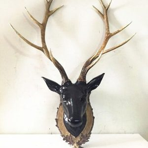 Large Resin Stags Head , Animal wall art Wall Mounted Stag